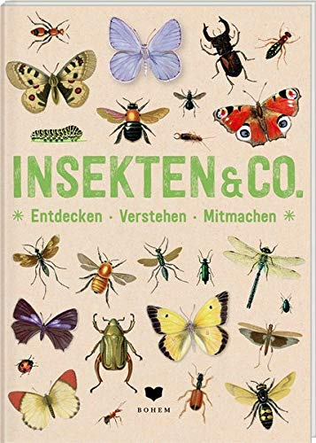 Roots: Insekten & Co (Bohem 2021)